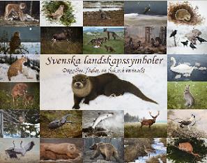 Svenska Landskapssymboler
